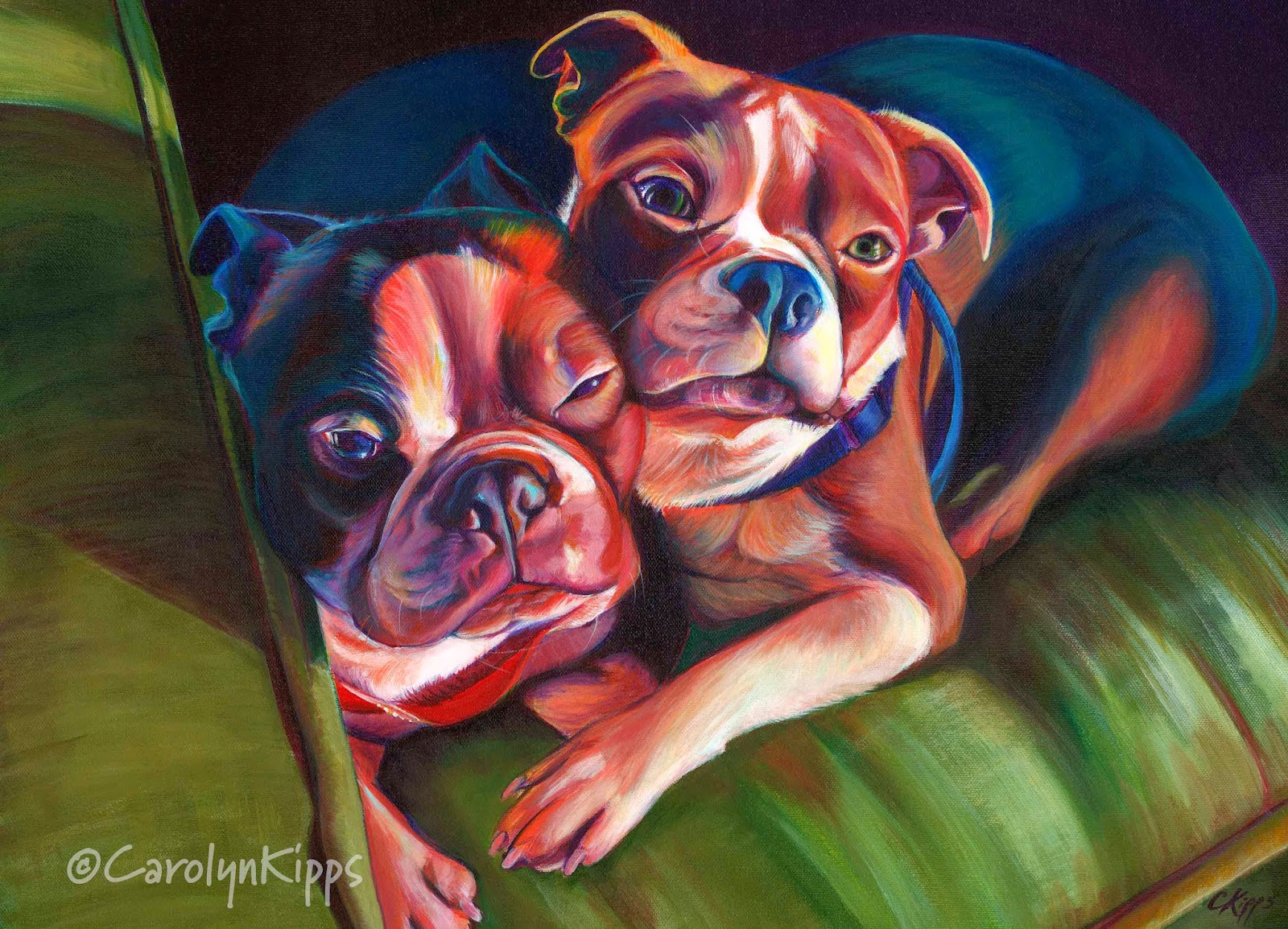 Bacon & Biscuit, Boston Terriers